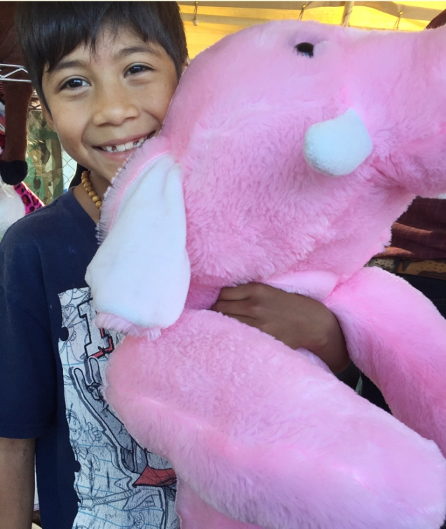 pink_1342